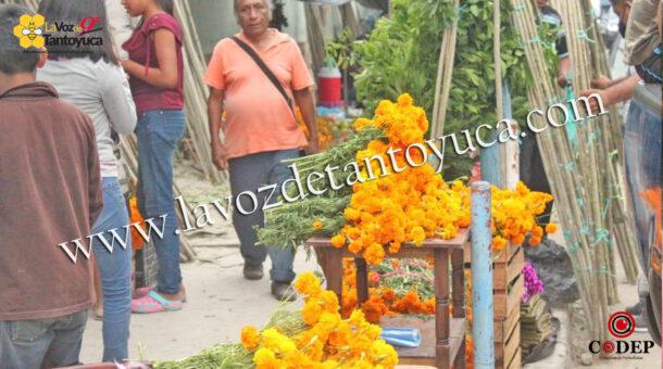 Crisis originada por el COVID-19 afecta a comerciantes en la Huasteca | LVDT