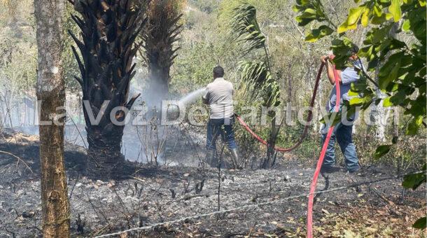 Incendio se sale de control en la Colonia Banrural | LVDT