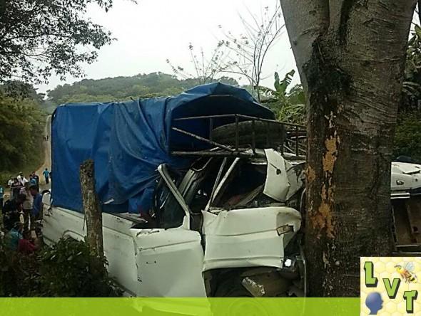 De esta manera quedo la camioneta despues de impactarse de lleno contra este árbol de Orejon