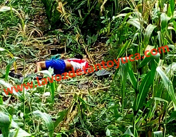 El cuerpo de José Luis Espejo, quedó tirado sobre una milpa tras el accidente. Foto: La Voz De Tantoyuca.