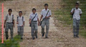 Mañana Miércoles se reanudan las clases en todo el Estado de Veracruz. Foto: LVDT.